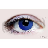 Primal Wonderland Contact Lenses